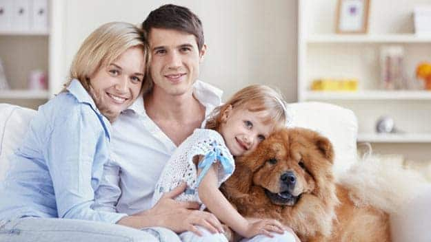 Wills & Trusts dog-young-family Direct Wills Wallingford